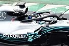 F1 Wolff dice que arrancaría el Halo