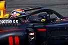 Verstappen lamenta estética do halo nos novos carros