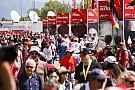 F1 Lo que quieren y lo que no quieren los aficionados de la Fórmula 1