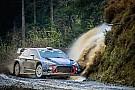 WRC Paddon y Sordo compartirán el tercer Hyundai en 2018