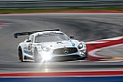 Endurance Black Falcon takes pole position for the first ever 24H COTA USA