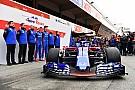 «Отличия огромны». Toro Rosso оказалась в восторге от Honda