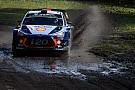WRC 【WRC】ポーランド最終日:ヌービル今季3勝目。ラトバラ5ポイント獲得
