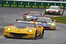 IMSA Jan Magnussen: No Rolex for Corvette this time at Daytona