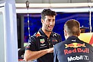 Ricciardo needed to know Honda choice wasn't
