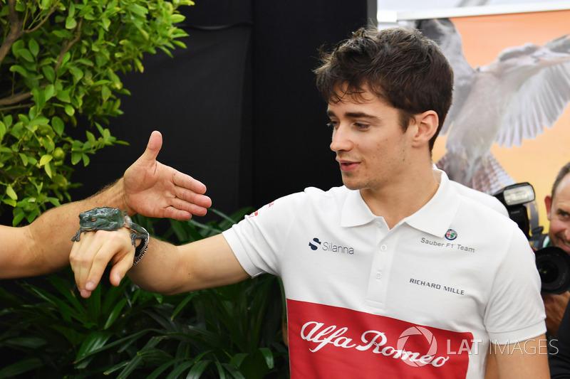 #8 Charles Leclerc, Sauber