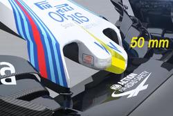 Williams FW38, Frontpartie