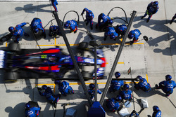 Pierre Gasly, Toro Rosso STR13 Honda, comes in for a pit stop