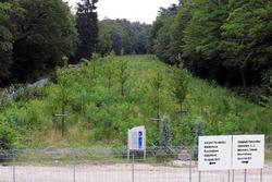 Los árboles del viejo Hockenheim y la estatua en honor a Jim Clark