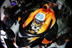 Fernando Alonso, McLaren, avec le Halo