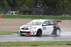 Marco Pascali, Arduini Corse, Peugeot 308 MI16-TCT