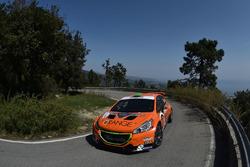 Simone Campedelli e Danilo Fappani, Peugeot 208 T16 #9