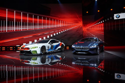 BMW M8 GTE met de BMW 8-series