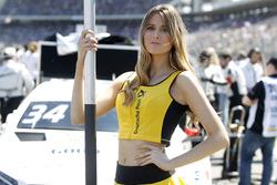 Gridgirl für Esteban Ocon, Mercedes-AMG Team ART, Mercedes-AMG C 63 DTM DTM