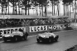 Paul Frere, Desmond Titterington, Jaguar D-type, leads Jack Fairman, Ken Wharton, Jaguar D-type
