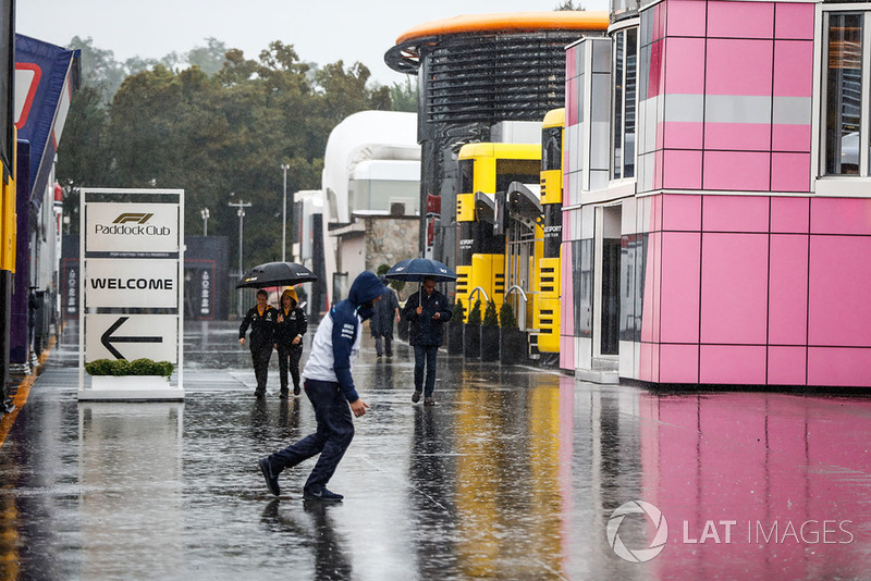 Rain falls in the paddock
