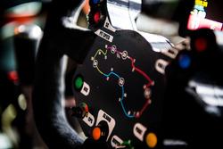 Lenkrad von James Courtney, Holden Racing Team