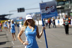 Grid girl of Nicky Catsburg, Polestar Cyan Racing, Volvo S60 Polestar TC1