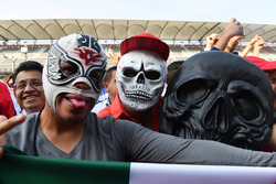 Lucha Libre Mask and Day of the Dead face paint