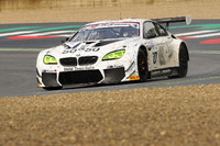 BMW M6 GT3 #50, Alex Zanardi BMW Team Italia