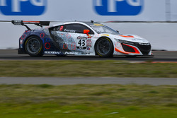 #43 RealTime Racing Acura NSX GT3: Ryan Eversley