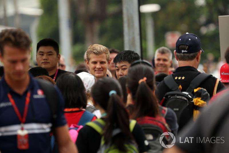 Marcus Ericsson, Sauber und Fans