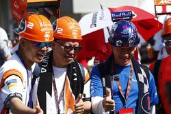 McLaren and Scuderia Toro Rosso fans