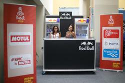Red Bull-dames