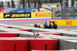 Felipe Nasr, Sauber C35 passes a bird