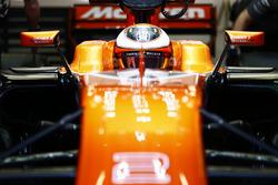 Stoffel Vandoorne, McLaren, dans le cockpit