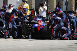 Brendon Hartley, Scuderia Toro Rosso STR12, pit stop action