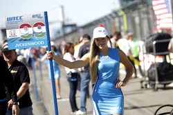 Grid girl of Daniel Nagy, Honda Team Zengo, Honday Civic WTCC