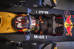 Sebastien Ogier im Red Bull RB7
