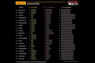 Set di pneumatici selezionati per pilota