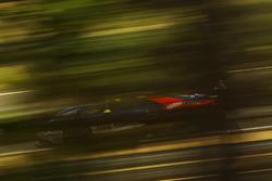 #69 Ford Chip Ganassi Racing, Ford GT: Ryan Briscoe, Richard Westbrook, Scott Dixon