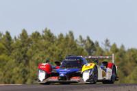 Lapierre scores pole for Peugeot at Portimao