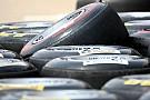 Pirelli Hungarian GP Friday Practice Report