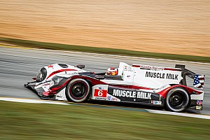 ALMS Race report Disappointing end to a wonderful season for Muscle Milk Pickett Racing