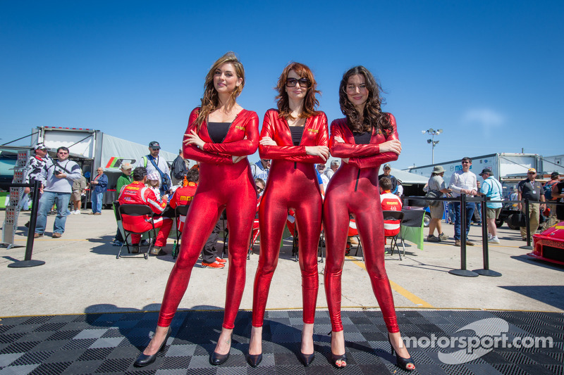 The Big Picture Best Of Grid Girls 2013