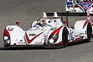 La Greaves Motorsport ha scelto i suoi piloti per il 2012