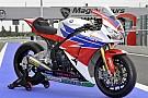 Grafiche 2013 per le Honda ufficiali a Magny-Cours