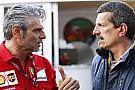 Haas: Ferrari işbirliğinde saklanacak bir şey yok