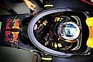 观点:F1危险性消亡论是错的