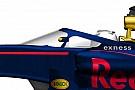 Ha minden jól megy, a Red Bull Szocsiban teszteli a saját cockpit-védelmét