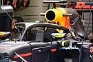Verstappen test halo tijdens eerste vrije training in Italië