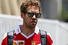 Ez mekkora már: Vettel plüss-sirályt kapott!