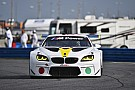 IMSA 24 Ore di Daytona: anche la BMW M6 è diventata un'opera d'arte
