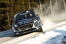 WRC Tänak -