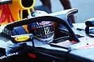 Formula 1 Shield kokpit koruması F1 gridini ikiye böldü