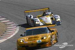 Corvette Racing Chevrolet Corvette C5-R and Rinaldo Capello
